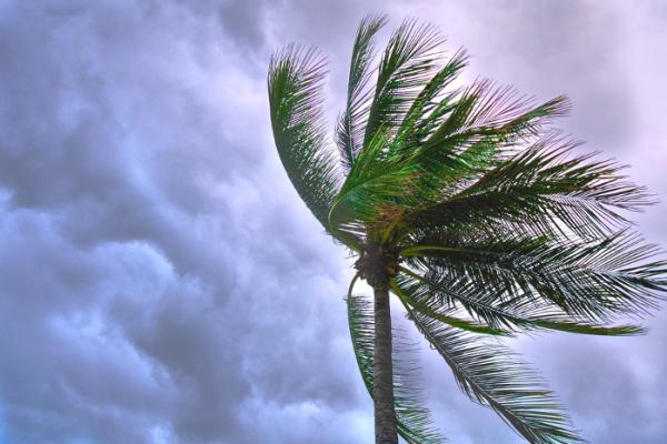 tormentas-tropicales